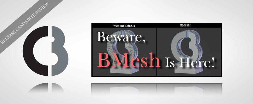 BewareBMesh_Top.jpg